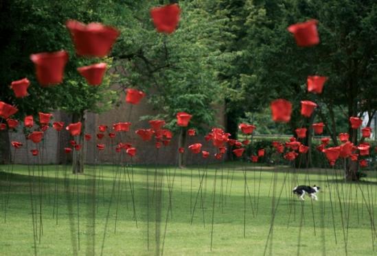 Klaprozen voor de vrede - Begijnhofpark Kortrijk - 07|2009
